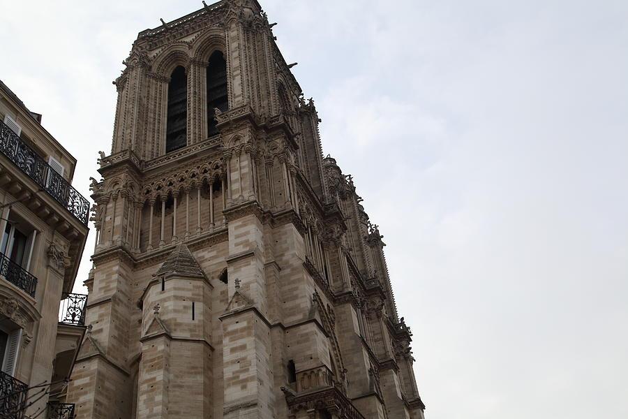 Paris France - Notre Dame De Paris - 011310 Photograph