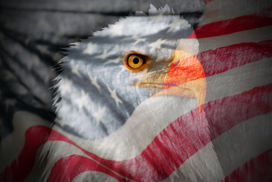 Patriot Photograph  - Patriot Fine Art Print