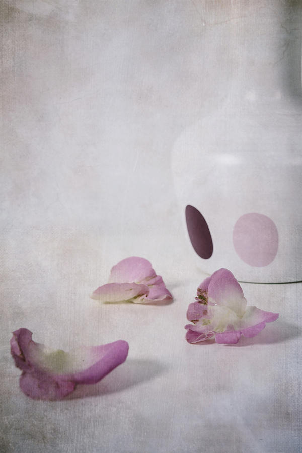 Detail Photograph - Petals by Joana Kruse