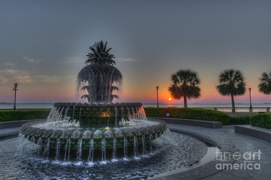Pineapple Sunrise Photograph