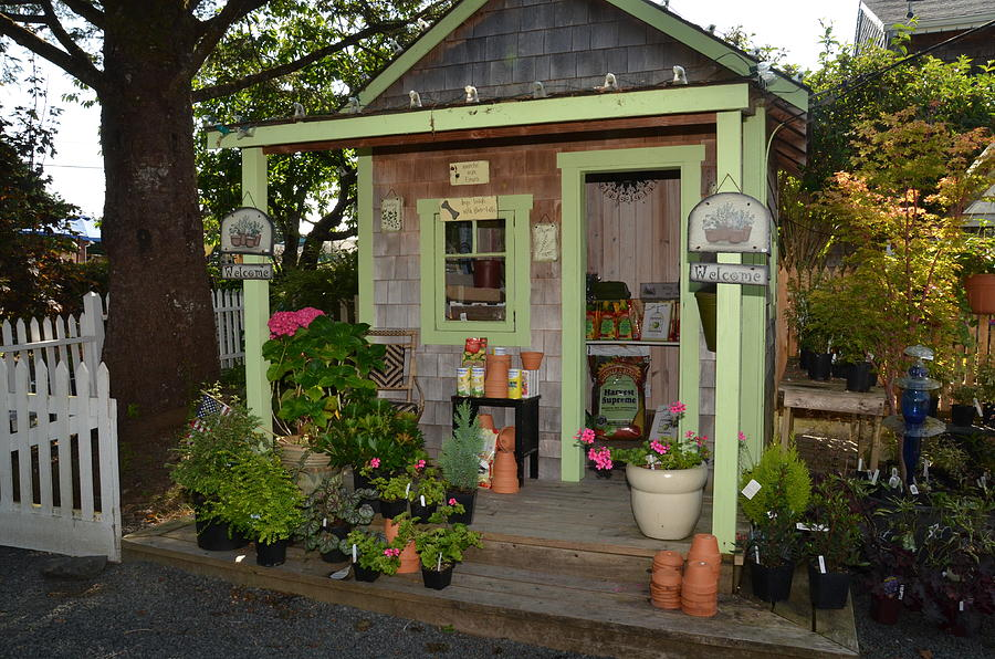 Potting Shed Photograph By Chuck Overton