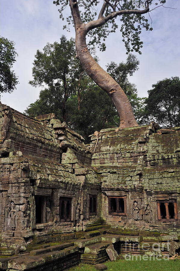 Preah Khantemple At Angkor Wat Photograph  - Preah Khantemple At Angkor Wat Fine Art Print