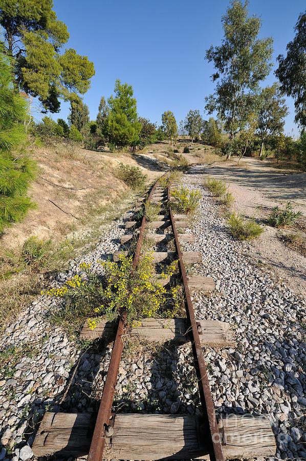 Railway Lines Photograph