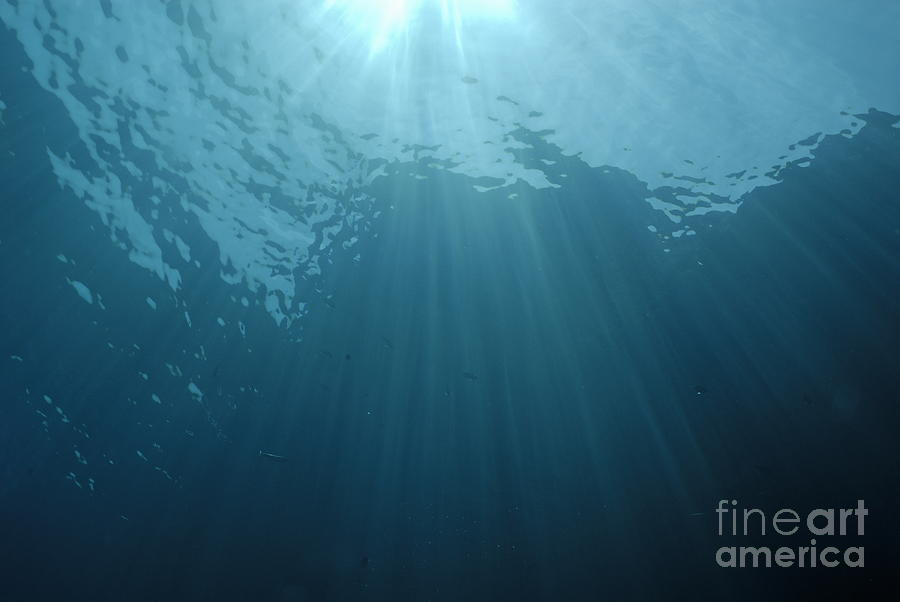 Rays Of Sunlight Shining Into Water Photograph
