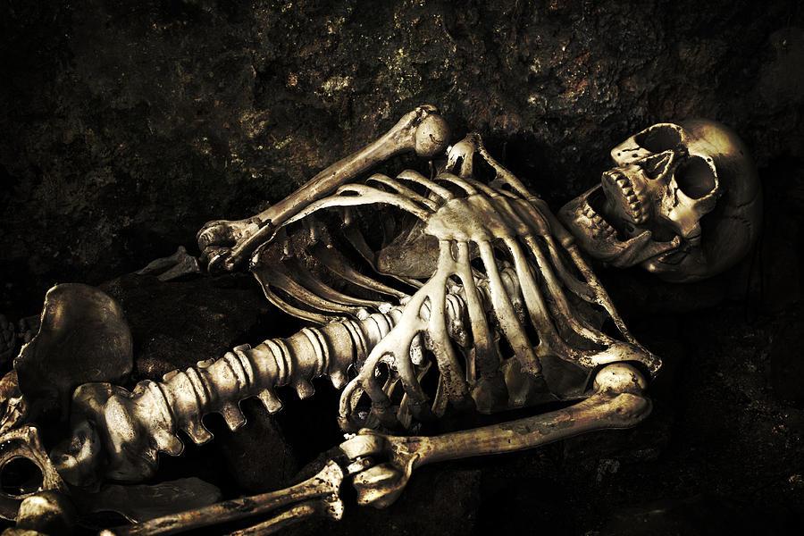 Skeleton Photograph - Skeleton  by Amanda Elwell