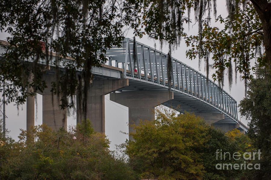 Spanish Moss Bridge View Photograph