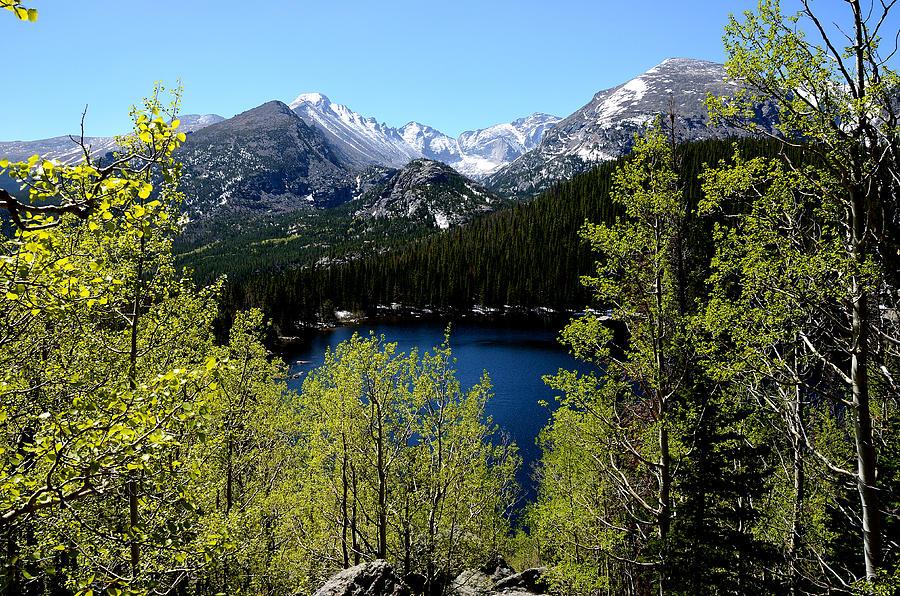Spring At Bear Lake Photograph