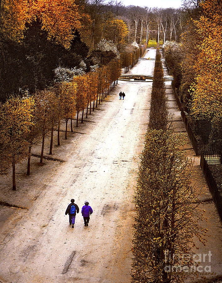 Europe Photograph - Strolling Versailles by Barbara D Richards