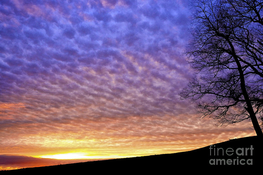 Sunrise Drama Photograph  - Sunrise Drama Fine Art Print