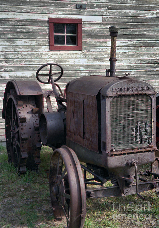 The Old Mule  Photograph
