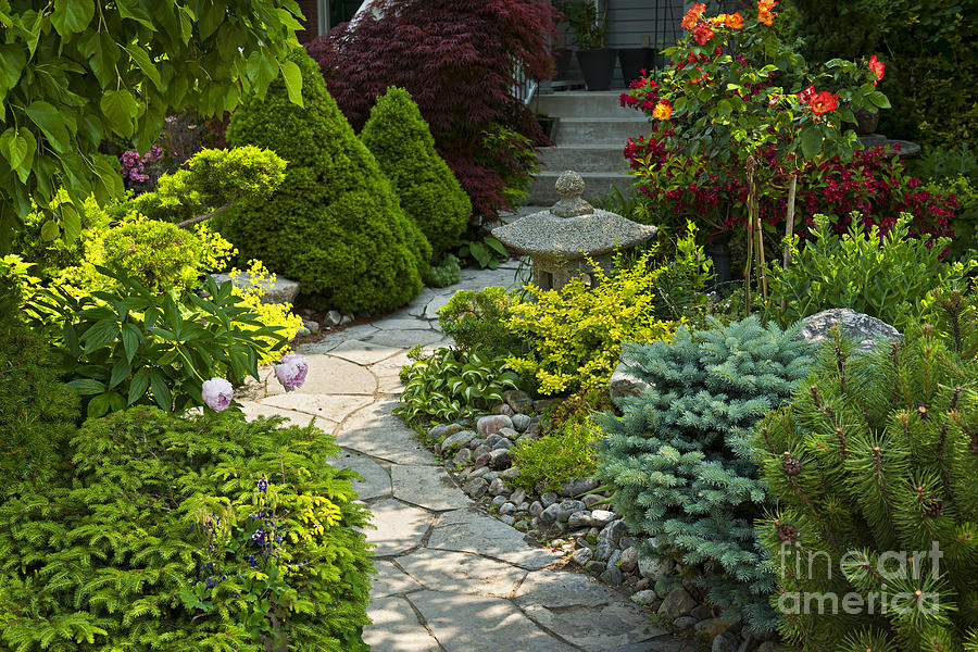 Landscaping Photograph - Tranquil Garden  by Elena Elisseeva
