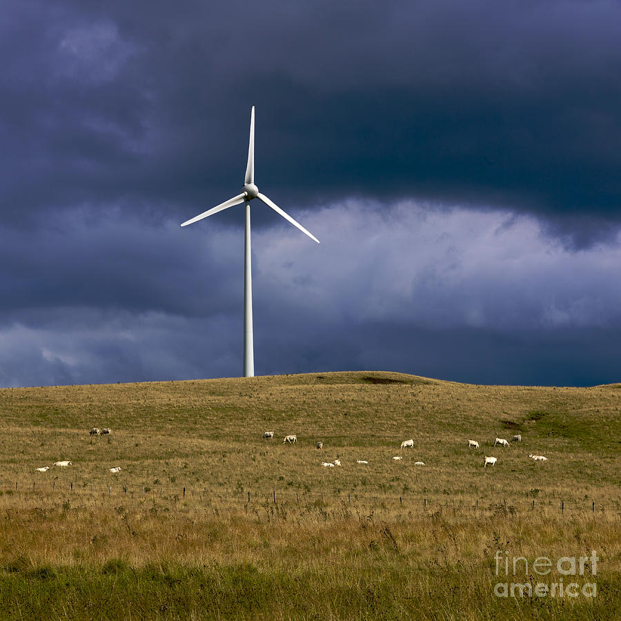 Wind Turbine  Photograph  - Wind Turbine  Fine Art Print