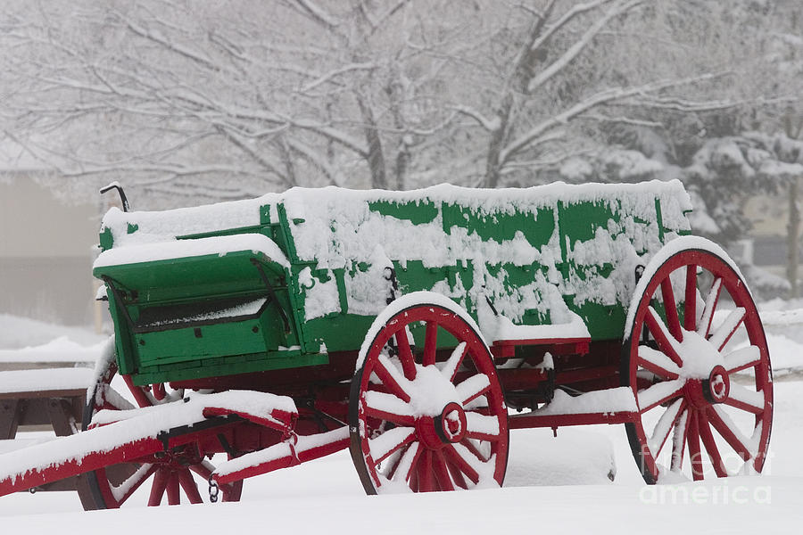 Winter Storm Photograph