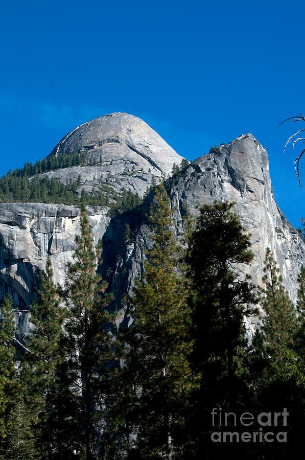 Yosemite National Park Photograph