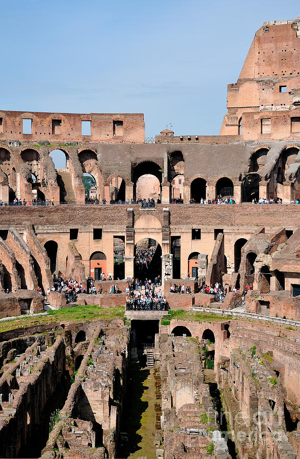 Colosseum In Rome Photograph