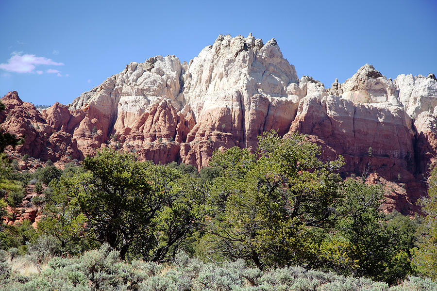 Capitol Reef National  Park Cathedral Valley Photograph
