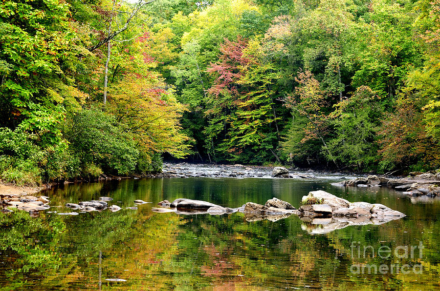 Fall Along Williams River Photograph  - Fall Along Williams River Fine Art Print