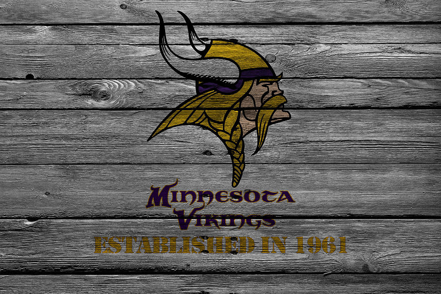 Minnesota Vikings Photograph  - Minnesota Vikings Fine Art Print