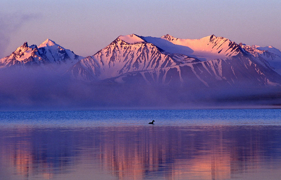 Altay Lakes  Kaldzhin Kol Photograph