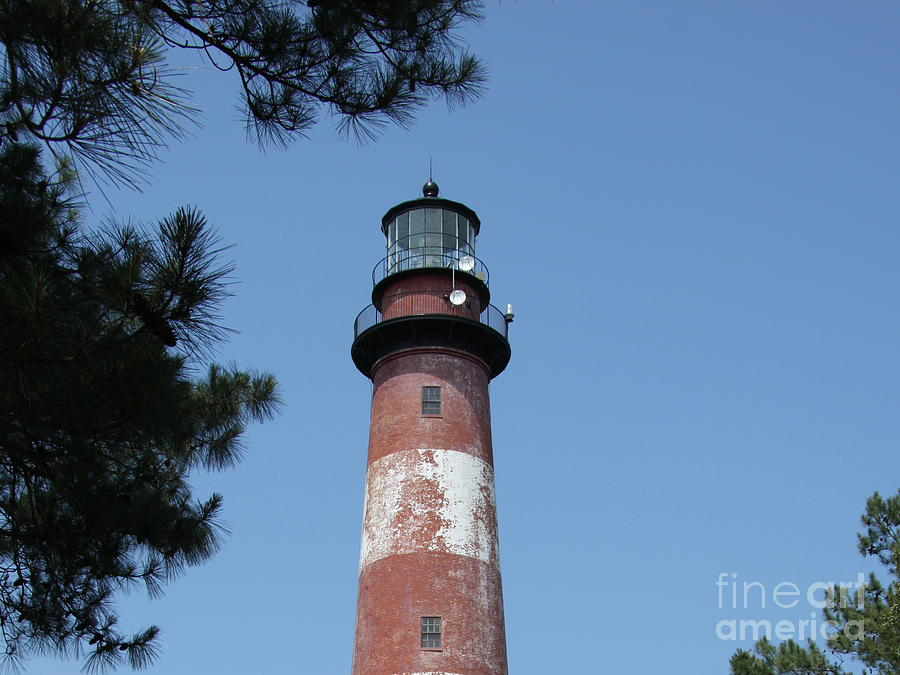 Assateague Lighthouse Photograph  - Assateague Lighthouse Fine Art Print