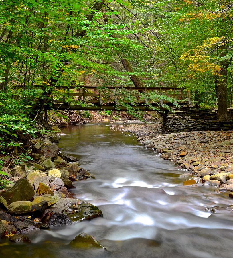 Babbling Brook Photograph  - Babbling Brook Fine Art Print
