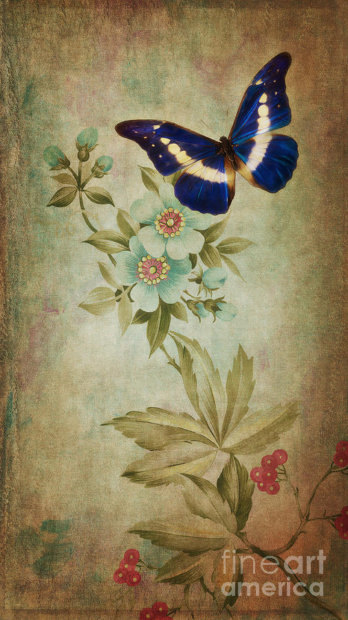 Butterfly Digital Art - Butterfly by Angela Doelling AD DESIGN Photo and PhotoArt