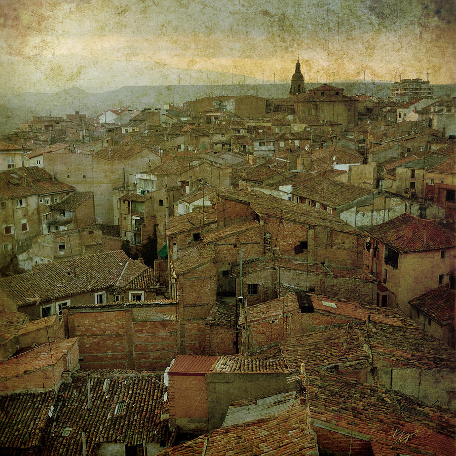 Calahorra Roofs From The Bell Tower Of Saint Andrew Church Photograph