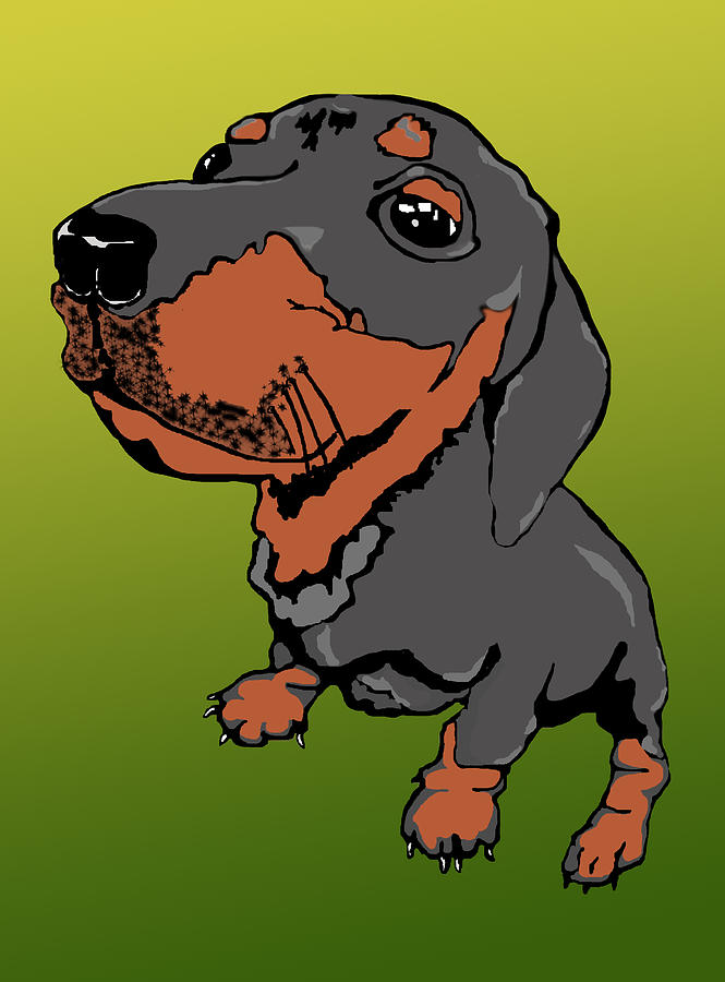 Dachshund Puppy Digital Art