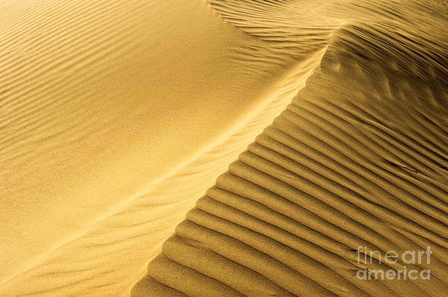 Desert Sand Dune Photograph