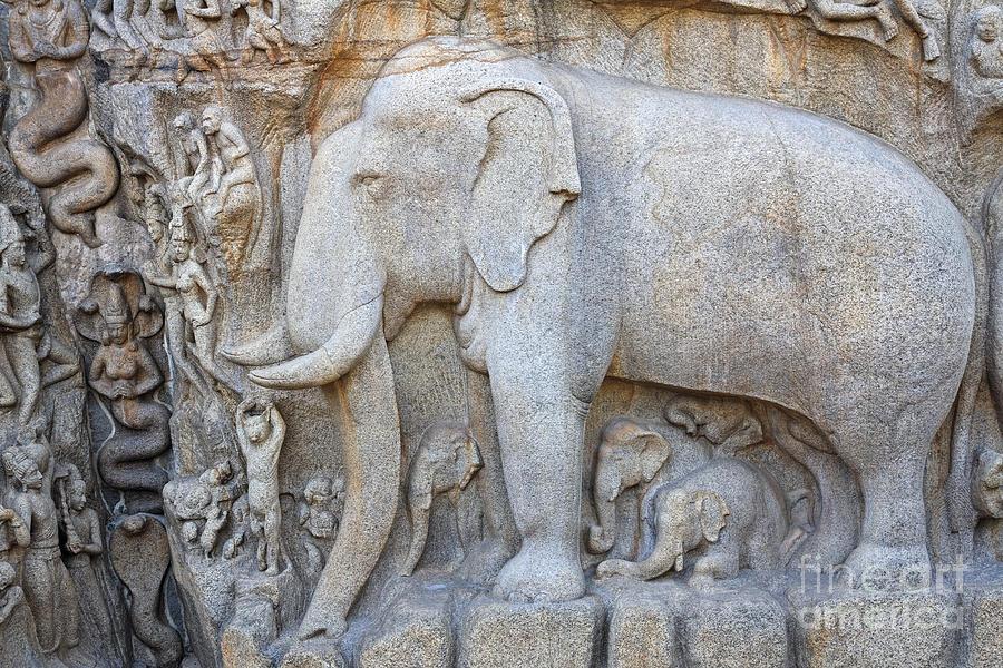 Elephant Sculpture At Mamallapuram  Photograph