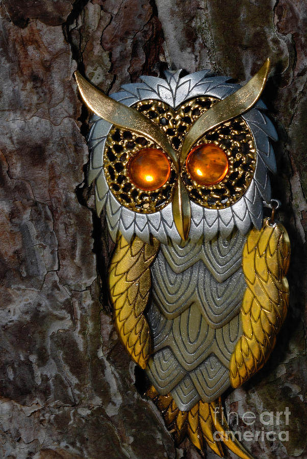 Faux Owl With Golden Eyes Photograph
