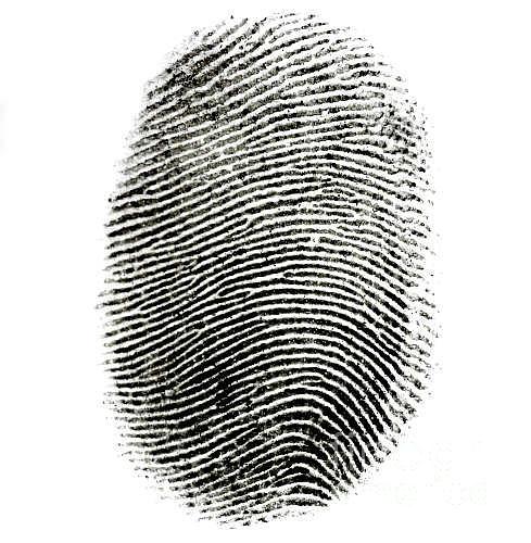 Fingerprint Photograph