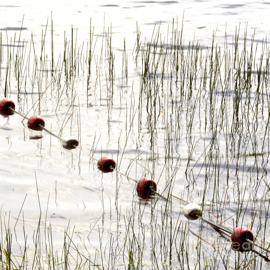 Outdoors Photograph - Floats by Bernard Jaubert