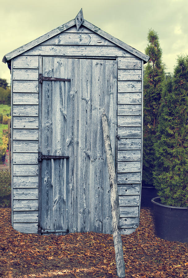 Garden Shed Photograph