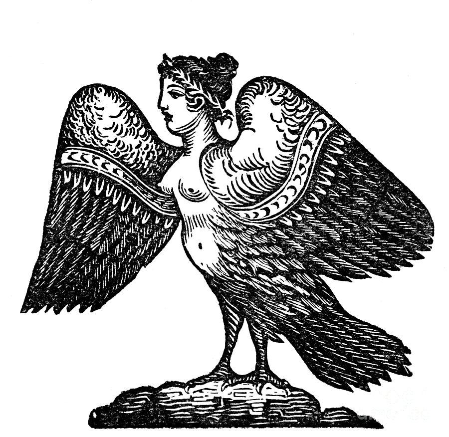Harpy, Legendary Creature Photograph