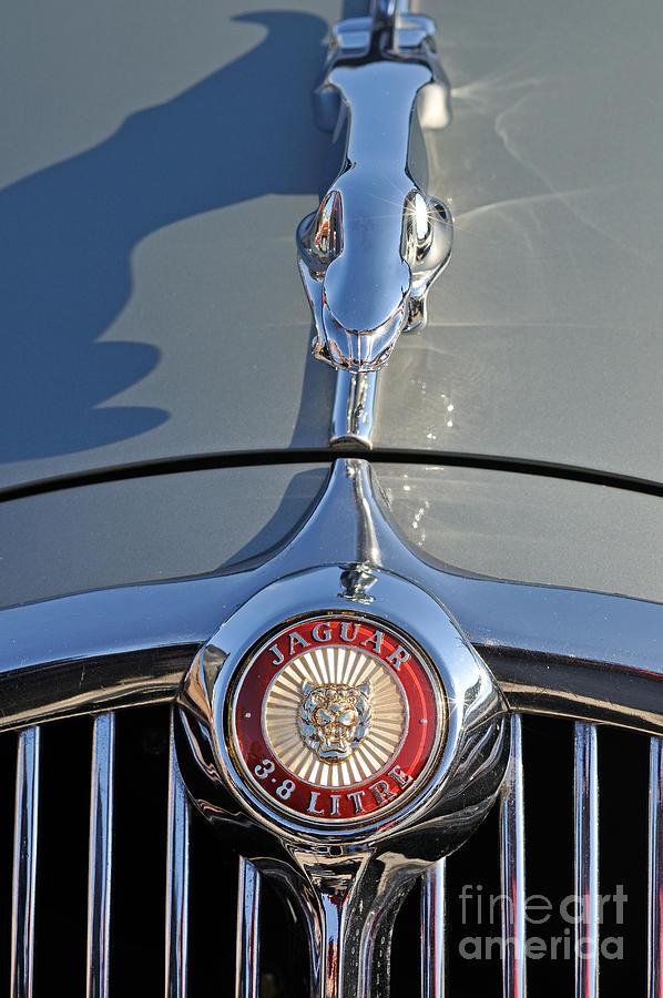Jaguar 3.8 S-type 1966 Badge Photograph