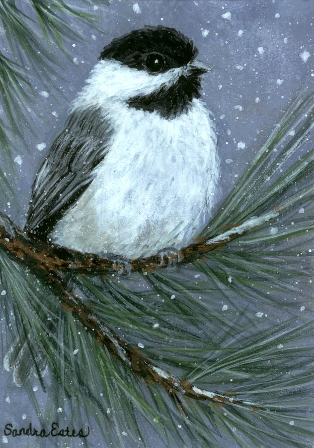 Let It Snow Chickadee Painting  - Let It Snow Chickadee Fine Art Print