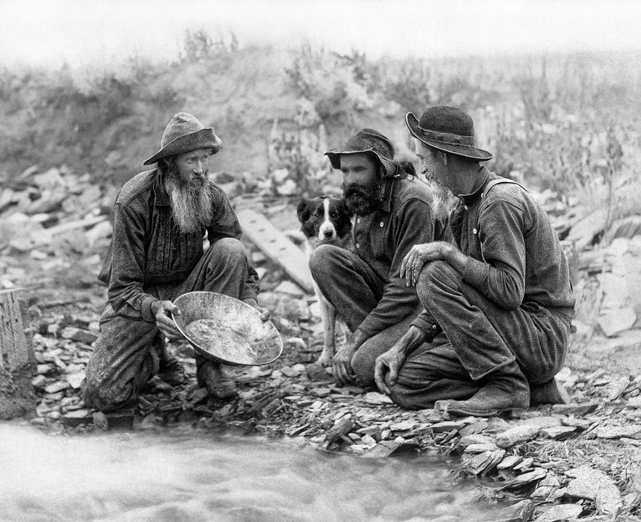 3 Men And A Dog Panning For Gold C. 1889 Photograph