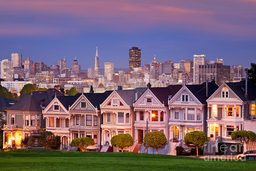 Painted Ladies Photograph - Painted Ladies by Brian Jannsen