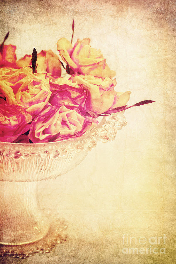 Roses Photograph - Romance by Angela Doelling AD DESIGN Photo and PhotoArt