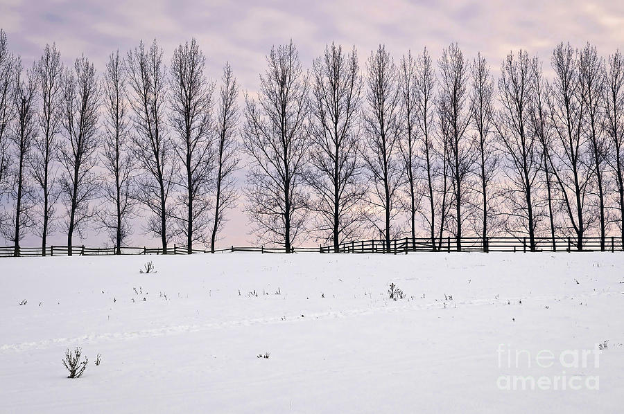 Rural Winter Landscape Photograph