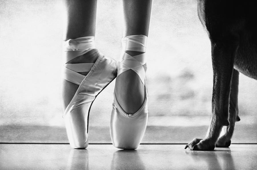 Shall We Dance Photograph