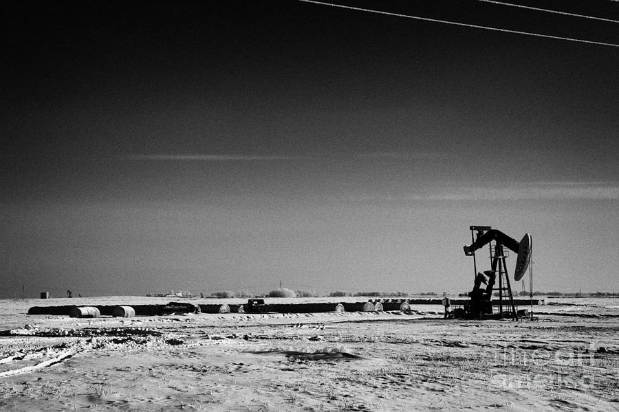 snow covered prairie agricultural farming land with pumpjacks oilfield winter Forget Saskatchewan Ca Photograph