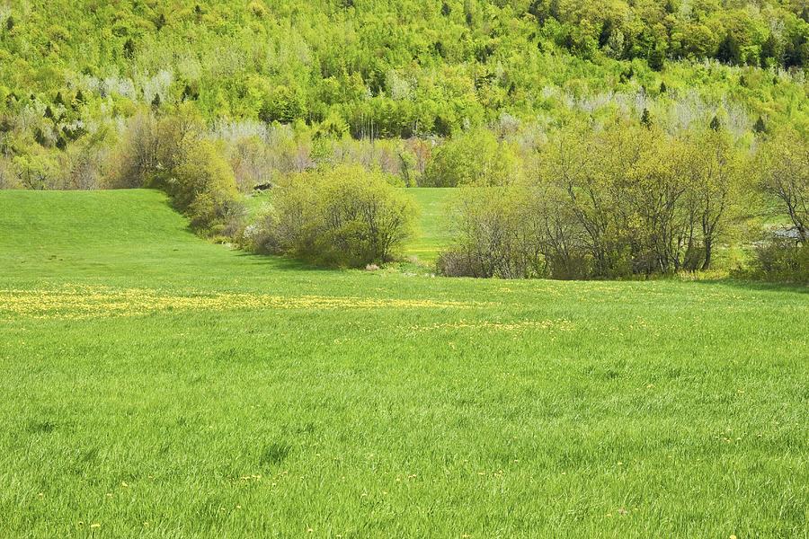 Spring Farm Landscape In Maine Photograph