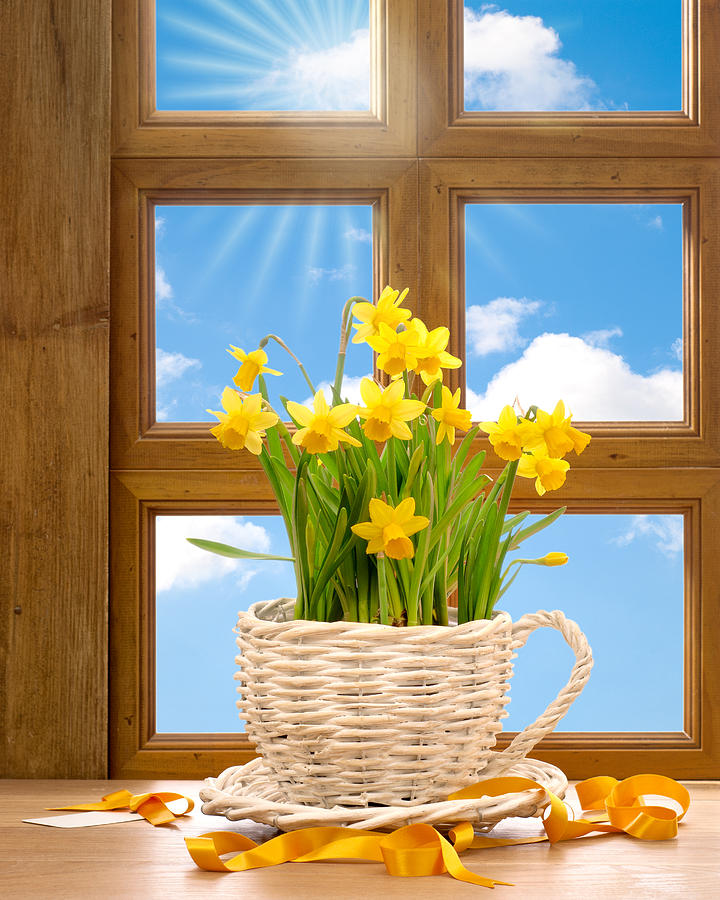Spring Window Photograph  - Spring Window Fine Art Print