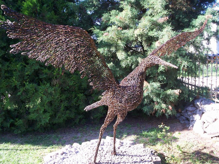 Wire Bird In Garden Sculpture