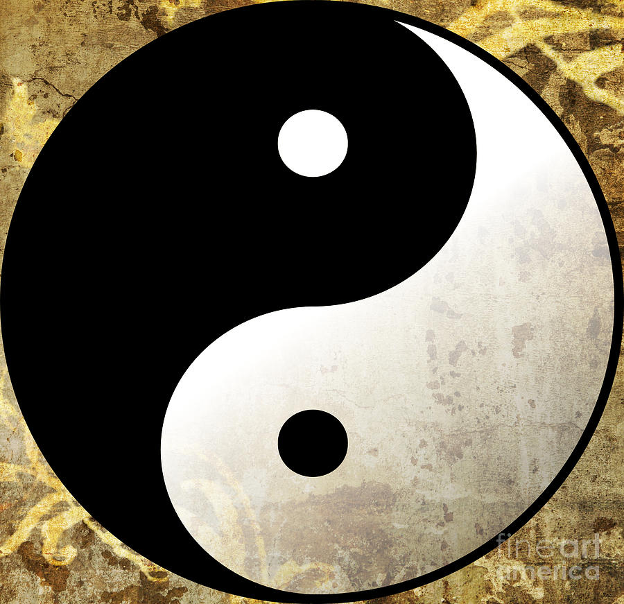 world wide yin and yang The concept of yin and yang forms the base of many oriental philosophies, particularly taoism the symbol used to represent the union of this duo, called taijitsu, stands for the interdependence and interconnectedness of the seemingly contrary/polar forces of nature.