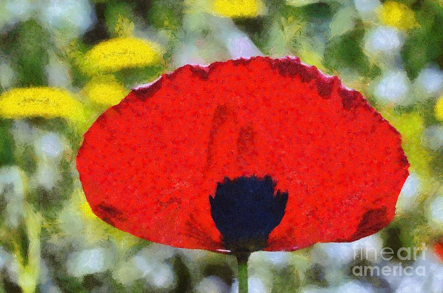 Poppy Flower Painting By George Atsametakis