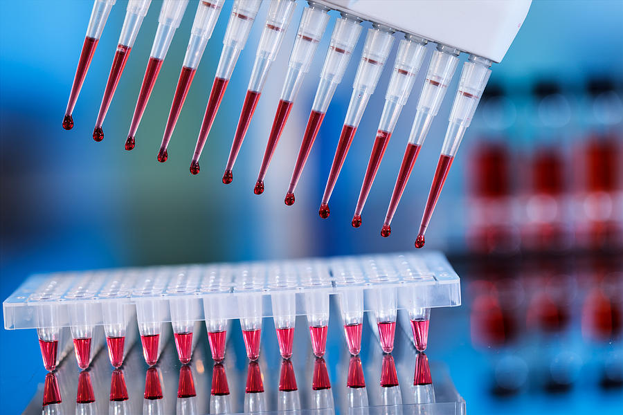 исследование крови методом ПЦР