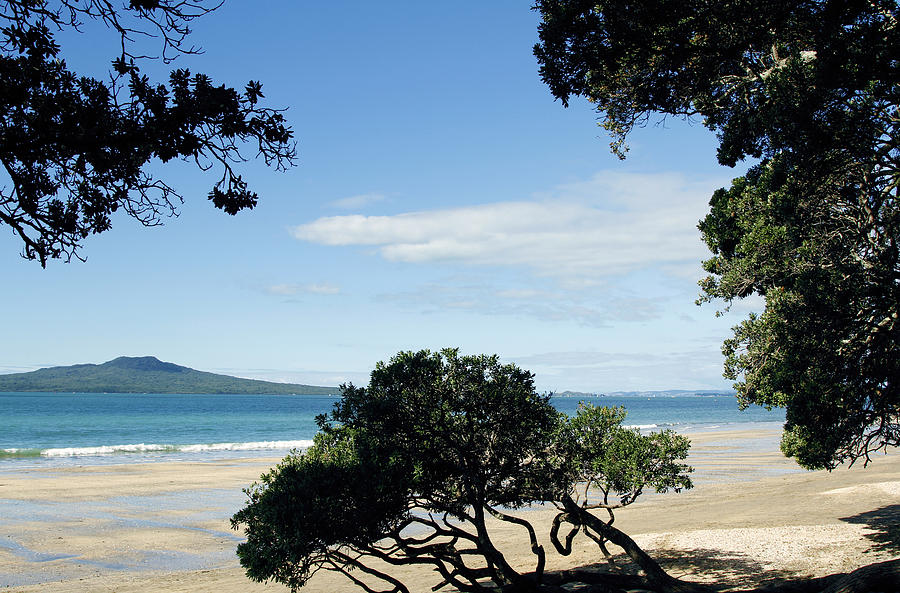 New Zealand Photograph - New Zealand by Les Cunliffe